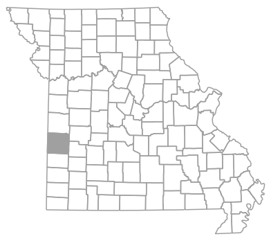 Locator map for Vernon County, Missouri