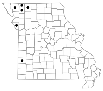 County map for Plestiodon septentrionalis (Prairie Skink)
