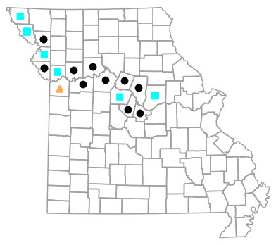 Historical county map for Anaxyrus cognatus (Great Plains Toad)