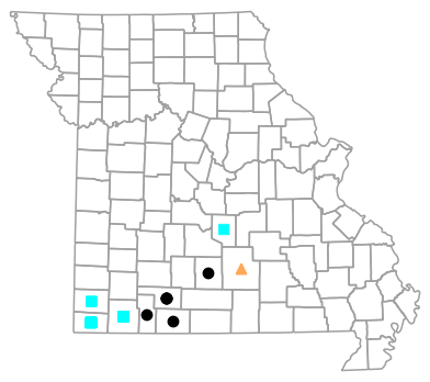 Historical county map for Eurycea tynerensis (Oklahoma Salamander)