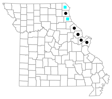 Historical county map for Pantherophis vulpinus (Eastern Foxsnake)