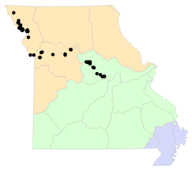 Ecological Drainage Units map for Anaxyrus cognatus (Great Plains Toad)