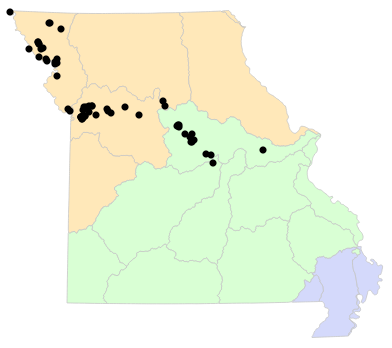 Ecological Drainage Units map for Anaxyrus woodhousii (Woodhouse