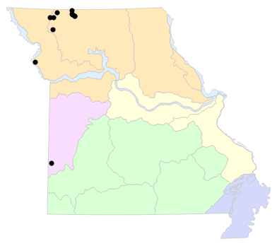 Natural Divisions locality map for Plestiodon septentrionalis (Prairie Skink)