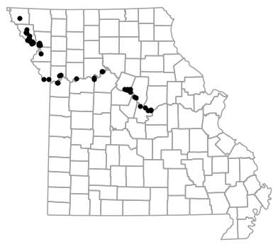 Locality map for Anaxyrus cognatus (Great Plains Toad)