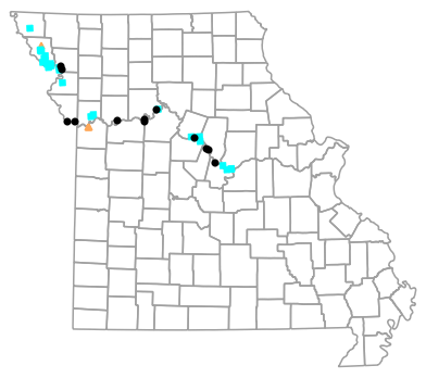 Historical locality map for Anaxyrus cognatus (Great Plains Toad)