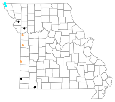 Historical locality map for Plestiodon obsoletus (Great Plains Skink)